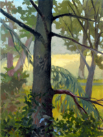 Tree Watching III   12x9   Oil on Canvas   2009