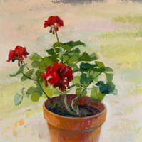 Geranium III   30x30   Oil on Panel   2018