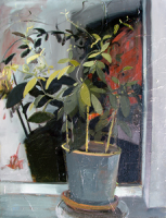 Night Plant   40x30   Oil on Canvas   2012