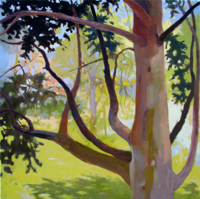 Tree Watching VII   20x20   Oil on Canvas   2011