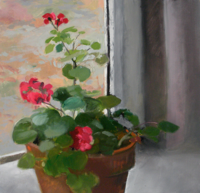 Geraniums Day   15x16   Oil on Canvas   2010